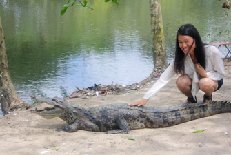 Human Centered Design & Engineering (HCDE) student Thuy Duong petting a crocodile. Photo courtesy of Amado Robancho
