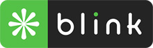 Blink Interactive Logo